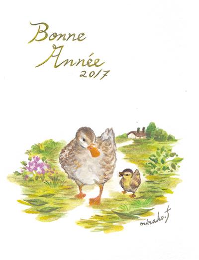 duckmini