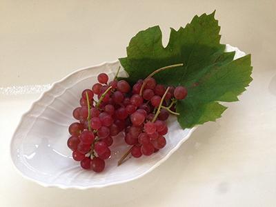grapemini